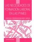 NECESIDADES DE FORMACION LABORAL EN LAS PYMES