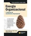 ENERGIA ORGANIZACIONAL