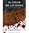 COLOR DE LAS HAYAS