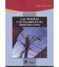 MEDIDAS CAUTELARES EN EL PROCESO CIVIL
