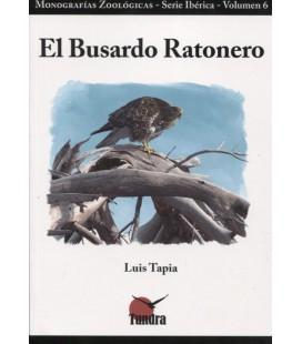 BUSARDO RATONERO
