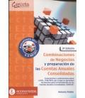 COMBINACIONES DE NEGOCIOS Y PREPARACION DE LAS CUENTAS ANUALES 3 ED